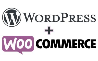 Mon premier projet e-Commerce à la mode WordPress !